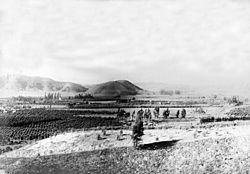ViewFromPomonaPark1904