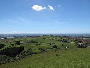 View looking north-west towards Auckland from top of Mount Puketutu
