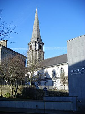Christ Church Cathedral Waterford from The Mall