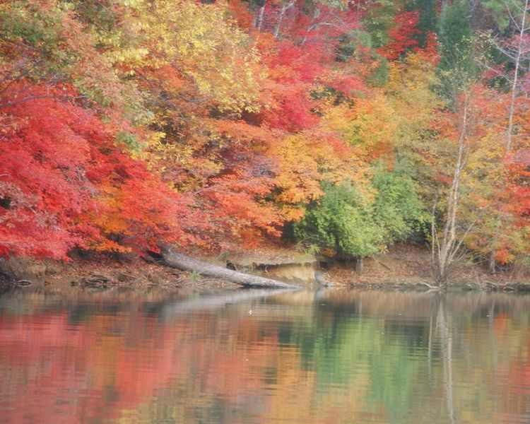Lake Wylie in autumn