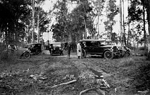 StateLibQld 2 202395 Gathering of early model motor vehicles in the bush at Oxley, 1930