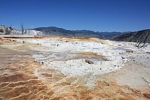 Mammoth Hot Springs - Terracing - August 2011