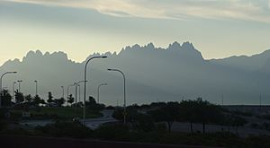 Organ Mountains Near Del Rey Blvd