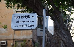 Se'adya Ga'on and HaHashmona'im intersection sign