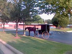 Amish buggy in the library parking lot