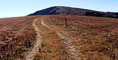 Appalachian-trail-big-bald-tnnc1