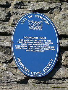 Newport boundary wall