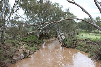 River wakefield in flood - old whitwarta bridge