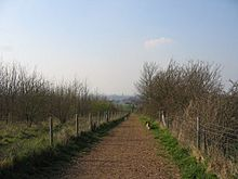 The Dogwalk at Gog Magog Downs - geograph.org.uk - 379827
