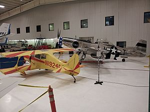Texas Air & Space Museum Beercat and P-51D