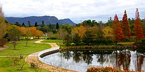 Hunter Valley Gardens