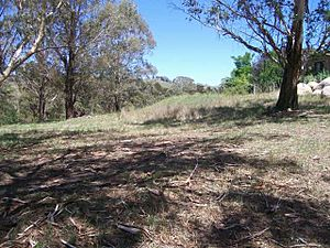 1840 - Military Station Archaeological Site and Burial at Glenroy - Site of building platforms (5052015b3).jpg