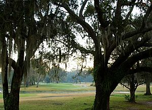 View of Babe Zaharias golf course - Tampa