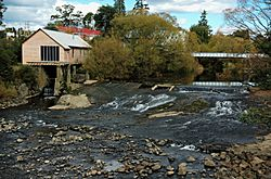 Weir-Deloraine-20070422-031.jpg