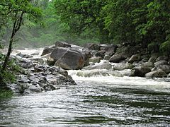 Mossman River during the wet season