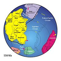 Positions of ancient continents, 550 million years ago