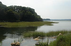 Stony Brook Harbor