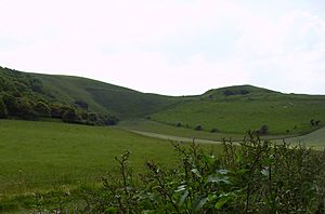 White Horse Hill & Dragon Hill c