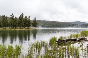 Dog Lake, Yosemite.jpg