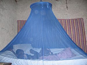 Malaria prevention-Insecticide treated bed net-PMI