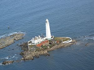 Aerial photo of St Mary's Island at high tide - geograph.org.uk - 654119