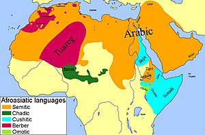 Hamito-Semitic languages.jpg