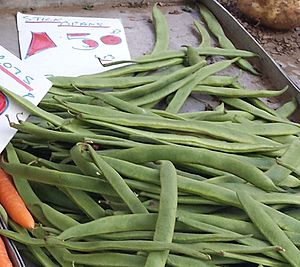 Stick beans for sale on a UK greengrocer's market stall in August 2013