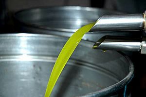 Cloudy olive oil1