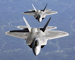Two F-22A Raptor in column flight - (Noise reduced)