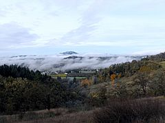 Willamette Valley fog