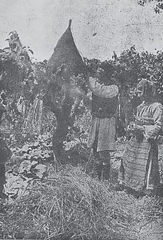 Beekeepers from Macedonia, old
