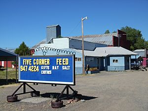 Feed store at Five Corners