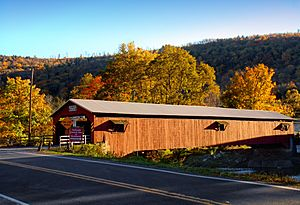 Forksville Covered Bridge Narrow