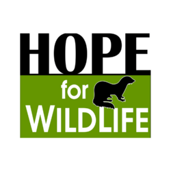 Hope for Wildlife foundation.png