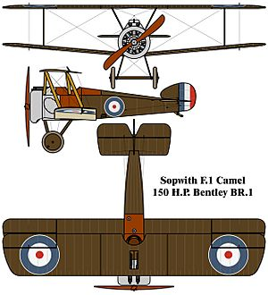 Sopwith F.1 Camel drawing
