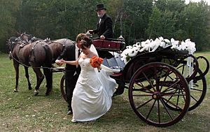 WeddingCarriage
