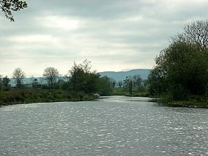 River Arney - geograph.org.uk - 383046