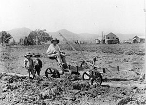 StateLibQld 2 157529 Farmer and his two children in the fields in the Lockyer, 1907