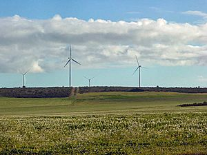 Geraldton Wind Farms DSC04308