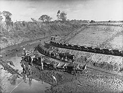 Torrens Flood Water Scheme Showing Horses Pulling Loads and Men(GN09762)
