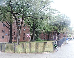 Pelham Pkwy Houses NYCHA cloudy jeh