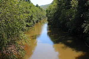 Mahanoy Creek in East Cameron Township, Northumberland County, Pennsylvania 1