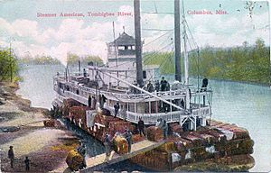 "Postcard of Steamer ""American"" on Tombigbee River at Columbus, Mississippi"