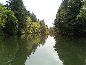 Tualatin River at Browns Ferry Park Tualatin