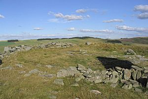 The remains of Bow Castle Broch - geograph.org.uk - 225213.jpg
