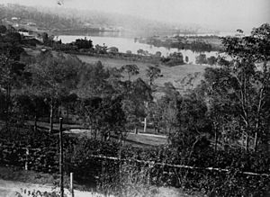 StateLibQld 1 42775 View from Cintra, Newstead, ca. 1875