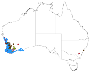 Map showing distribution of Tribonanthes in southwestern Australia