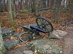12-pounder Napoleon cannon at Stones River National Battlefield