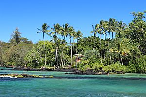 Four-mile beach, Hilo, Hawaii