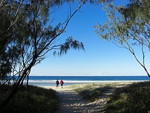 Beach in Kingscliff Queensland